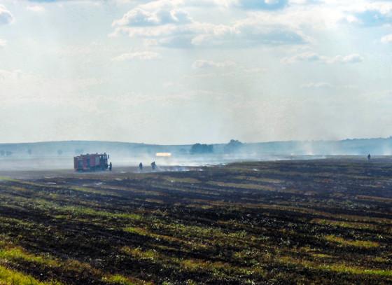 incendiu vegetatie alexandriei  SITE